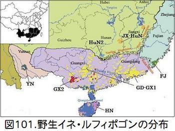 B101野生イネ分布.jpg