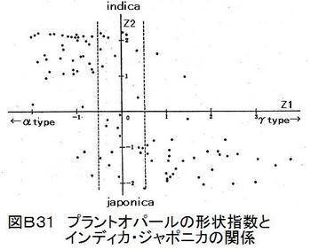 B31PO形状指数.jpg