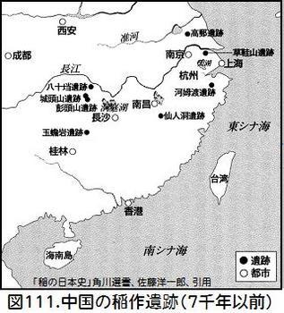 図111中国の稲作遺跡.jpg