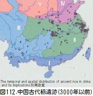 図112中国古代稲遺跡.jpg